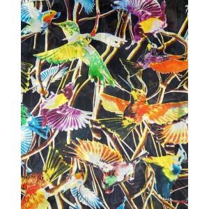 Hummingbird Silk Scarf, Black